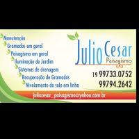 Julio Cesar - Paisagista