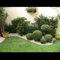 Seu jardim  - Paisagista